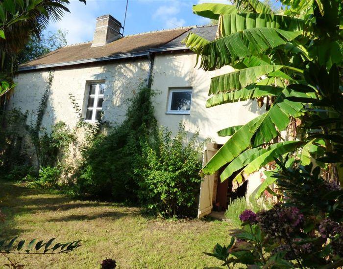 maison centre ville Sablé sur Sarthe - 72300 - Jardin clos et maison annexe.