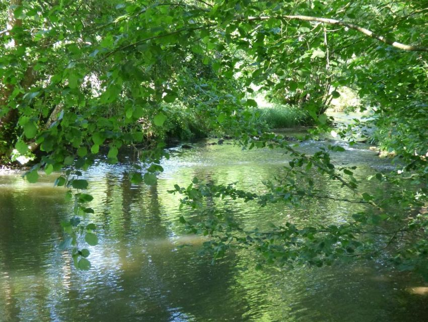 Affluent de la Sarthe : la riviere la Vegre