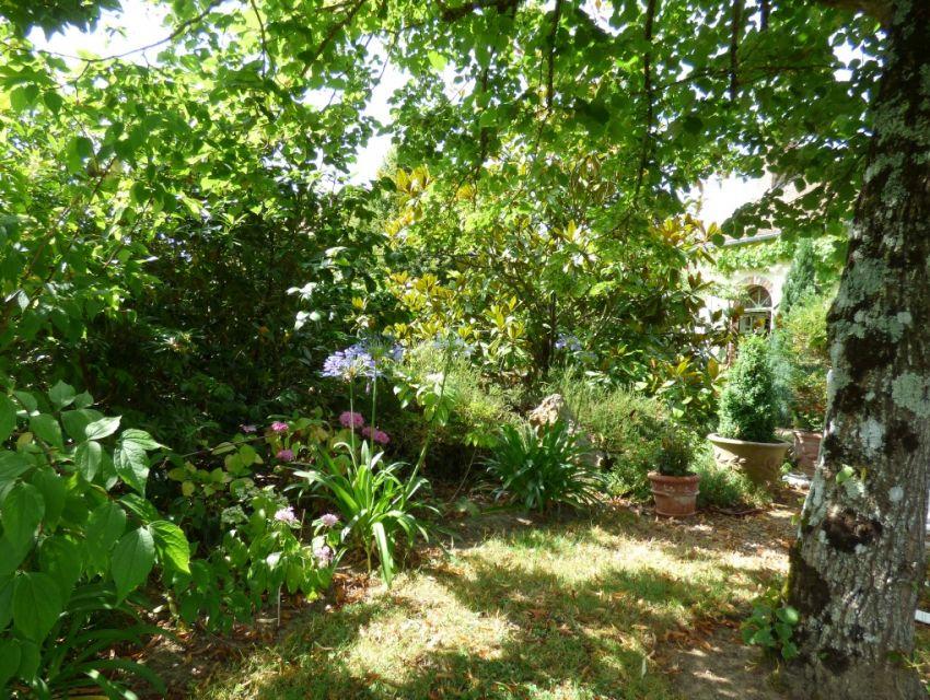 Joli jardin d'agrément (parterres fleuris)