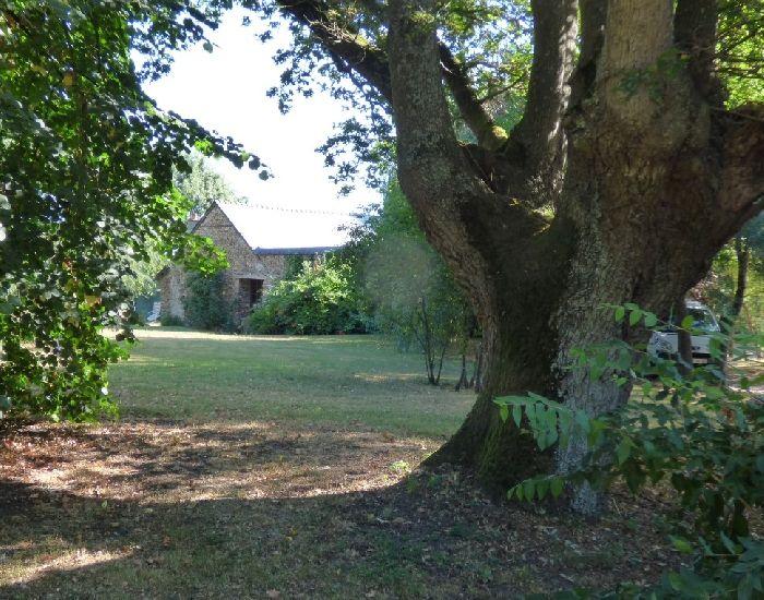 Haut-Anjou région de Sablé sur sarthe et de St Denis d'Anjou - Propriété rurale.
