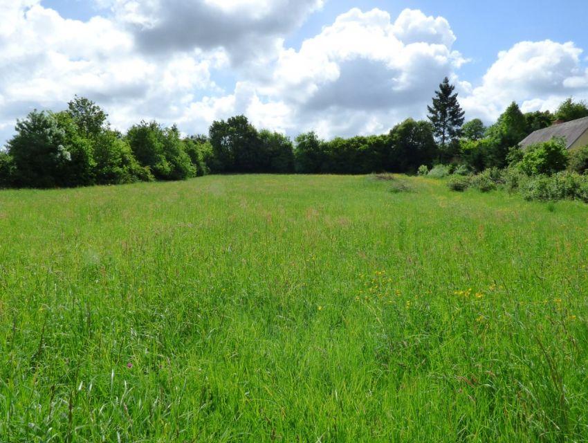 Terrain à bâtir à quelques minutes de Sablé Sur Sarthe