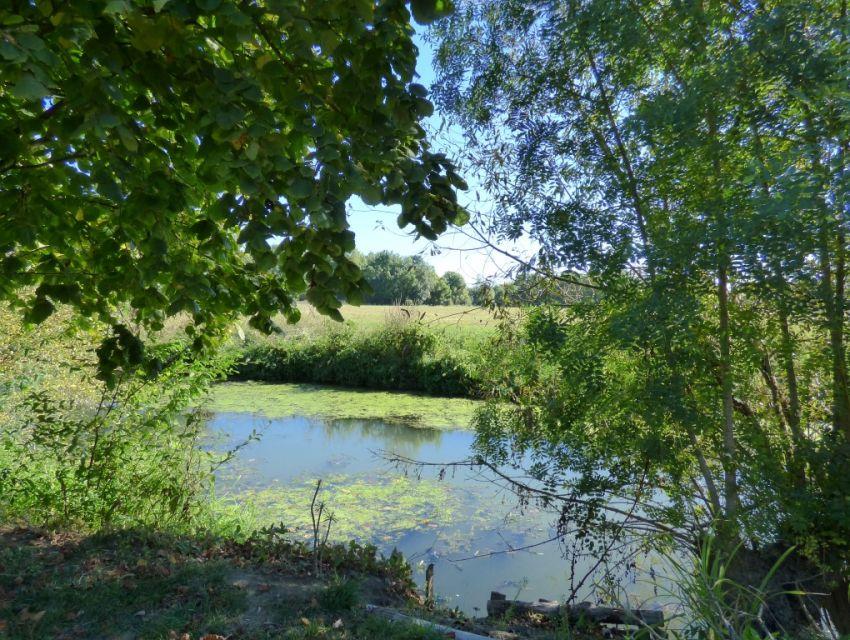 Propriété villageoise en bord de rivière Morannes Anjou